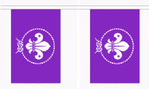 Scout Movement Purple Flag 3m Bunting